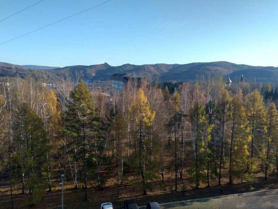 Views of Stolby National Park from Siberian Federal University dendro lab.